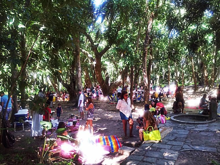 Parque Lage 10