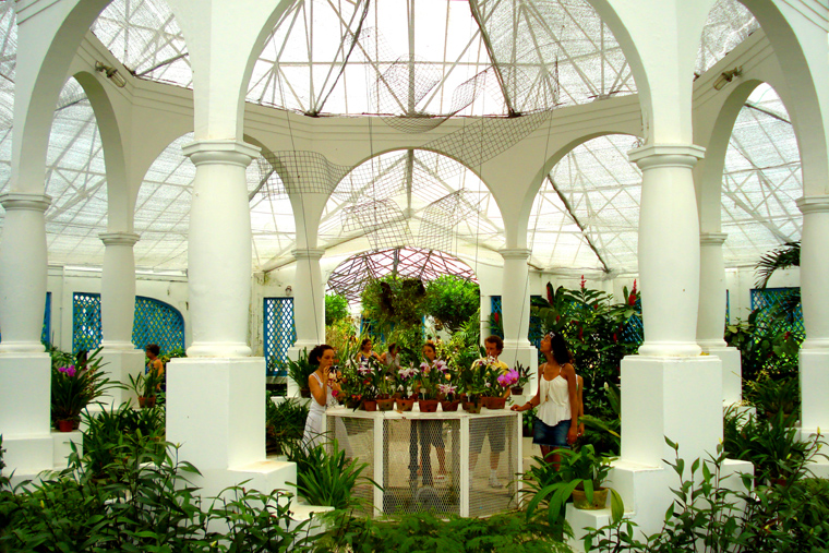 Jardim Botanico 5