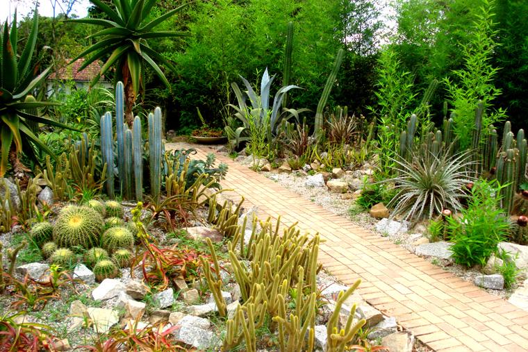 Jardim Botanico 6